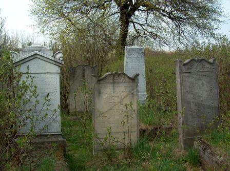 Macewy na cmentarzu Zydowskim