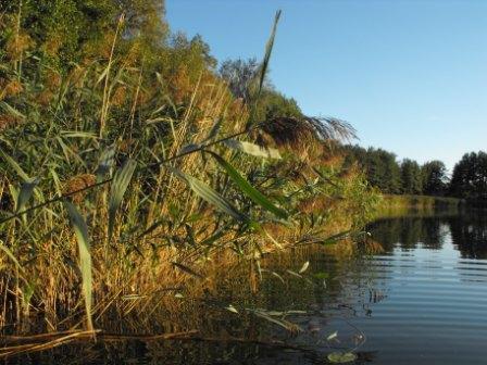 Mielno jezioro