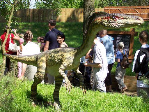 Dinozaur w Rogowie (Zaurolandia)
