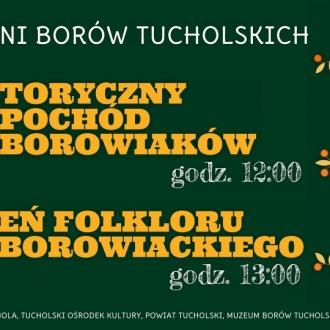 VIII Historyczny Pochód Borowiaków i Dzień Folkloru...