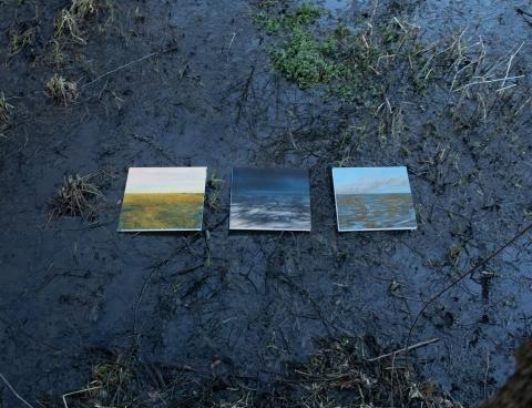 """Galeria dla Wystawa Ewy Kozery """"Temat rzeka"""""""